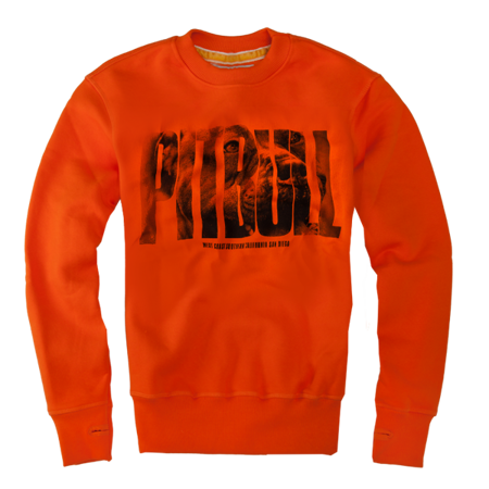 Pit Bull Bluza Crewneck Orange Dog