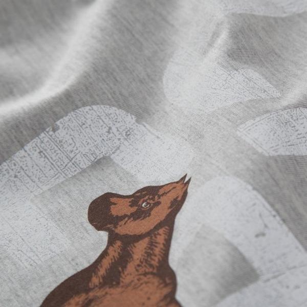 Pit Bull Bluza bez kaptura CALFORNIA FLAG Szara